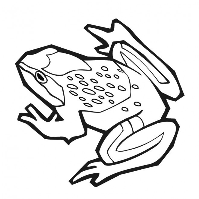 Coloriage et dessins gratuits Grenouille vecteur noir et blanc à imprimer