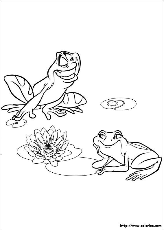 Coloriage et dessins gratuits Grenouilles en amour à imprimer