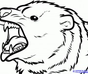 Coloriage dessin  Grizzly 3
