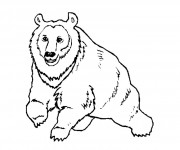 Coloriage dessin  Grizzly 4