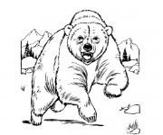 Coloriage dessin  Grizzly 7