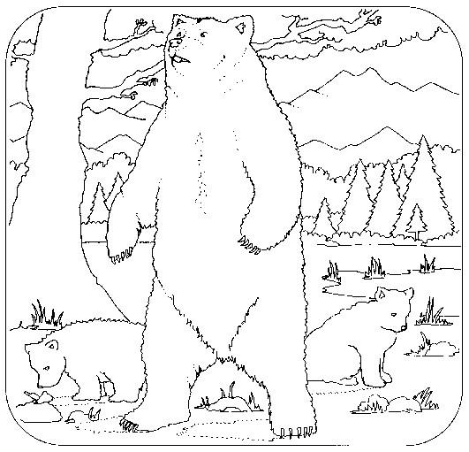 Coloriage et dessins gratuits Grizzly dans la forêt à imprimer