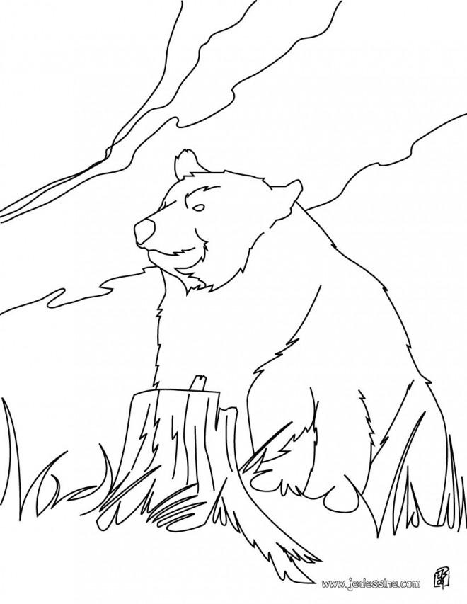 Coloriage grizzly dans la nature dessin gratuit imprimer - Dessin de grizzly ...