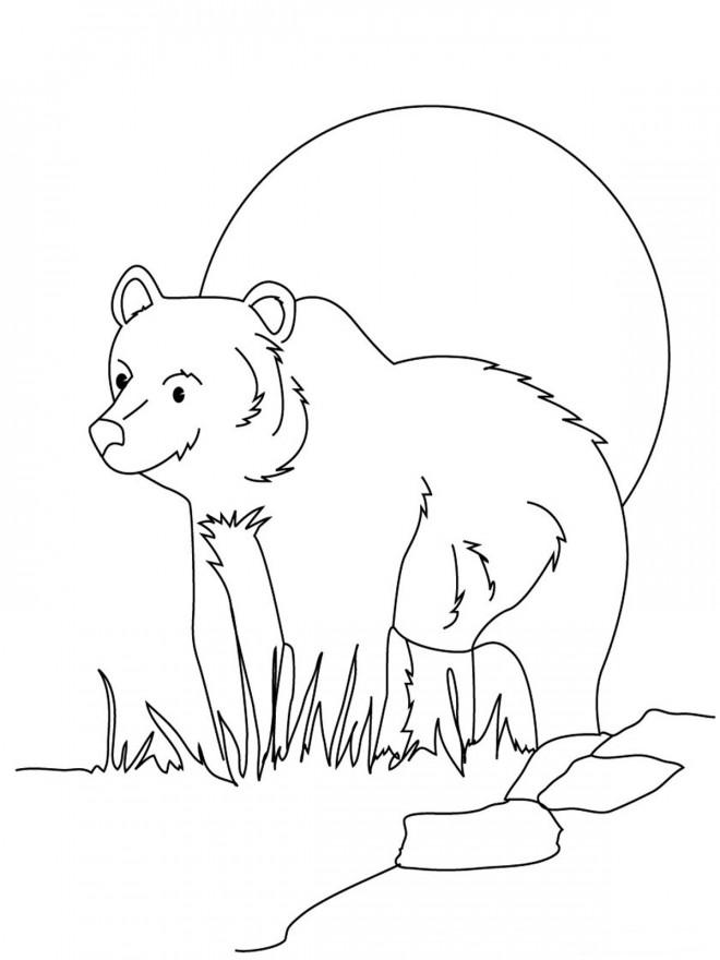 Coloriage grizzly en plein air dessin gratuit imprimer - Dessin de grizzly ...