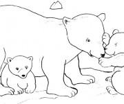 Coloriage Grizzly et ses petits