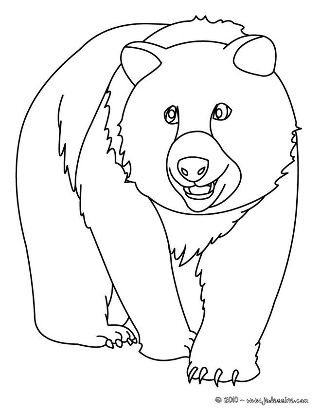 Coloriage et dessins gratuits Grizzly facile à imprimer