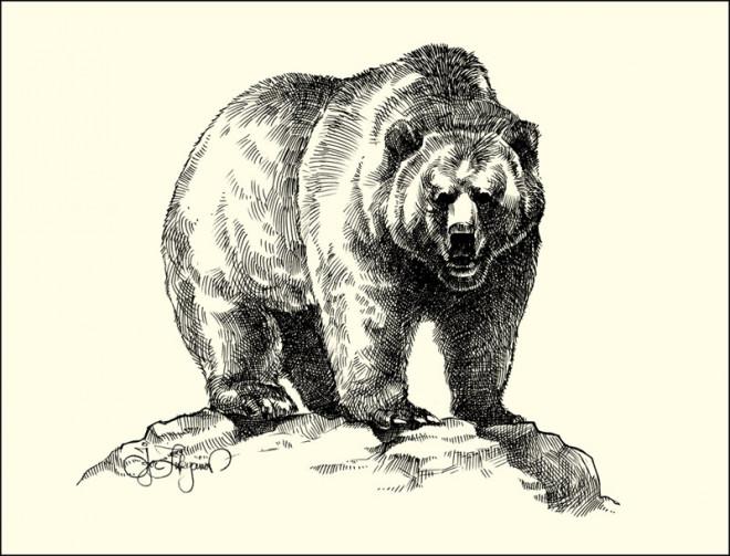 Coloriage et dessins gratuits Grizzly réalistique à imprimer
