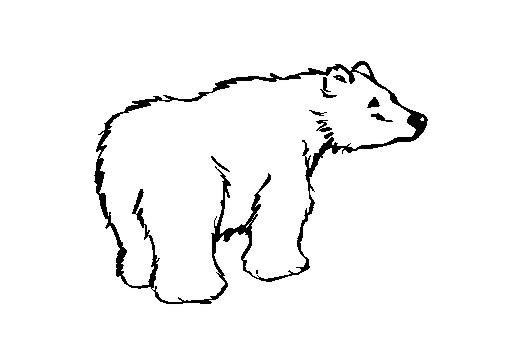 Coloriage et dessins gratuits Petit Grizzly à imprimer