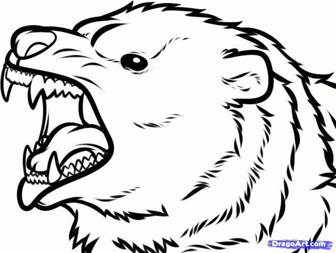 Coloriage t te de grizzly agit dessin gratuit imprimer - Dessin de grizzly ...