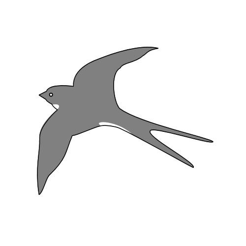 Coloriage et dessins gratuits Hirondelle en gris à imprimer
