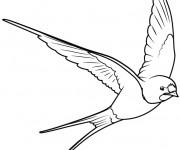Coloriage et dessins gratuit Hirondelle en noir et blanc à imprimer