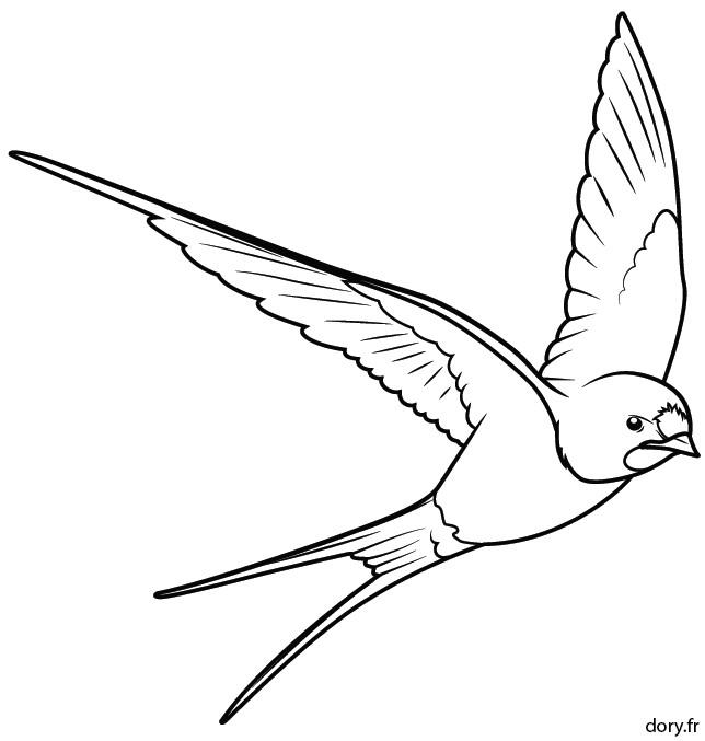 Coloriage et dessins gratuits Hirondelle en noir et blanc à imprimer