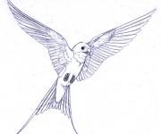 Coloriage et dessins gratuit Hirondelle magnifique à imprimer