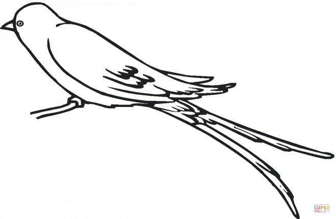 Coloriage et dessins gratuits Hirondelle stylisé à imprimer