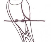 Coloriage Hirondelle sur fil au crayon