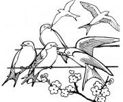 Coloriage et dessins gratuit Hirondelle sur un fil à imprimer