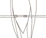 Coloriage Hirondelle sur un fil facile
