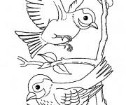 Coloriage Hirondelles en vol sur arbre