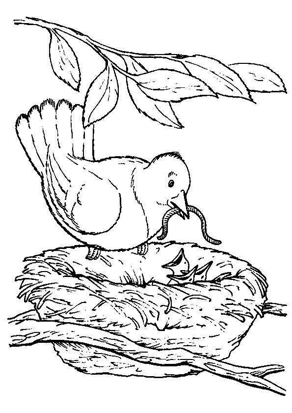 Coloriage et dessins gratuits Mère Hirondelle et ses petits à imprimer