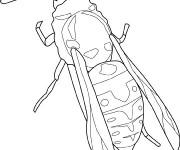 Coloriage et dessins gratuit Insecte en couleur à imprimer