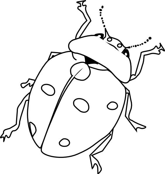 Coloriage et dessins gratuits Insecte en Printemps à imprimer