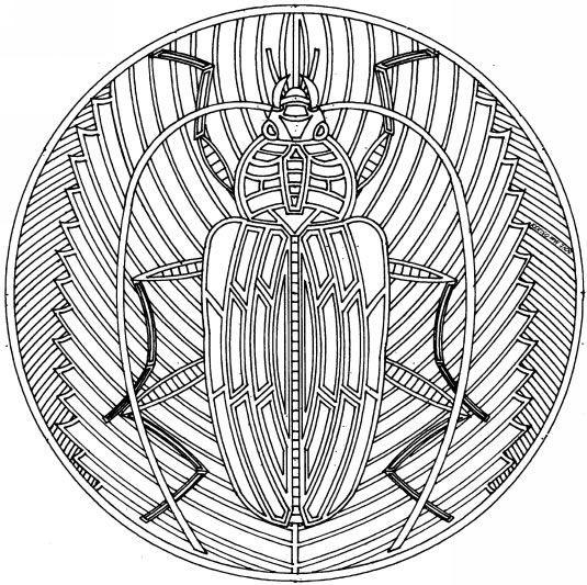 Coloriage et dessins gratuits Insecte mandala à imprimer