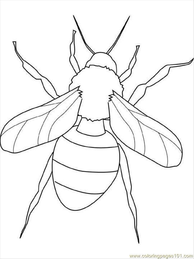 Coloriage et dessins gratuits Insecte qui ouvre ses ailes à imprimer
