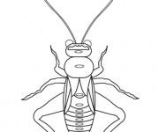 Coloriage et dessins gratuit Insecte stylisé à imprimer
