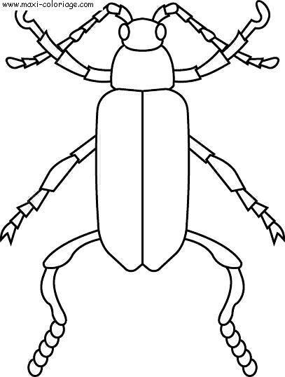 Coloriage et dessins gratuits Insecte stylisé maternelle à imprimer