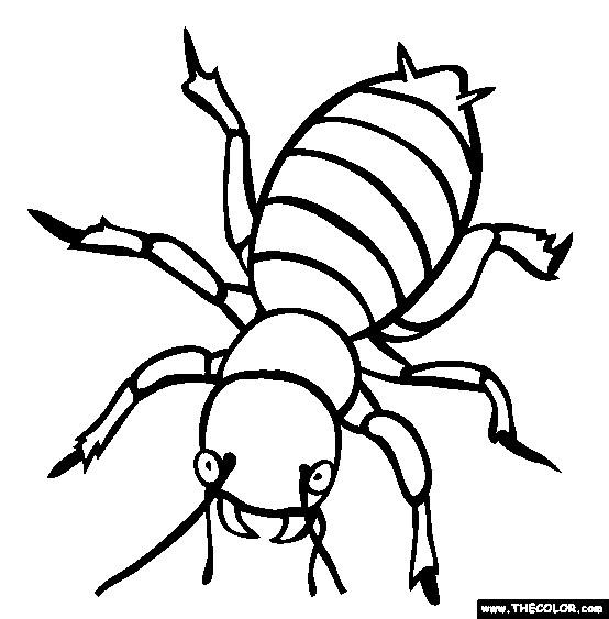 Coloriage et dessins gratuits Insecte sur ordinateur à imprimer
