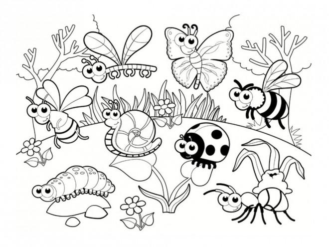 Coloriage et dessins gratuits Insectes en plein air à imprimer