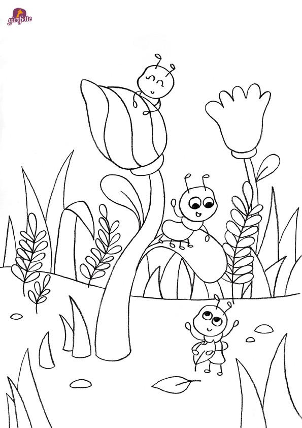 Coloriage et dessins gratuits Insectes et Les Fleures à imprimer