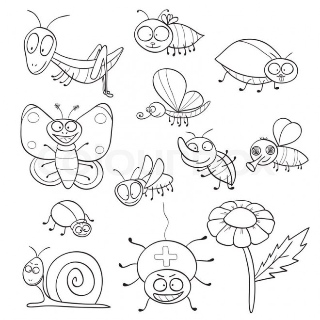 funny fly insects coloring pages - photo#13
