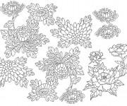 Coloriage et dessins gratuit Adulte Fleurs par tout à imprimer