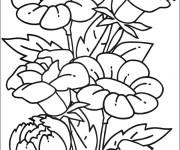 Coloriage et dessins gratuit Des beaux fleurs à imprimer