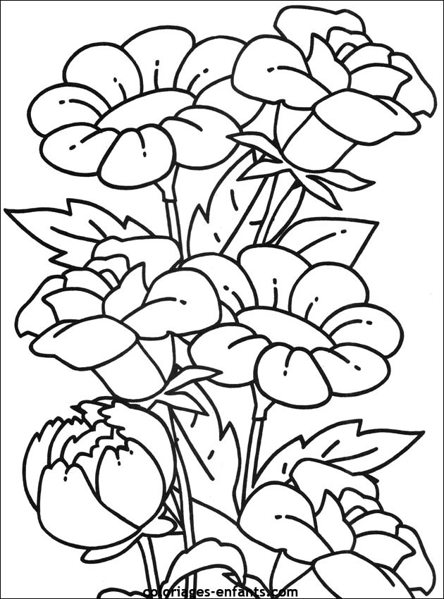 Coloriage Des beaux fleurs dessin gratuit à imprimer