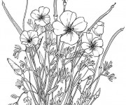 Coloriage et dessins gratuit Fleurs Adultes au crayon à imprimer