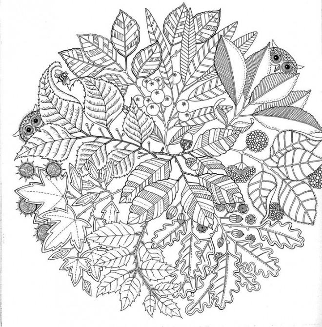 Coloriage Jardin Arbres.Coloriage Jardin Arbre Mandala Dessin Gratuit A Imprimer