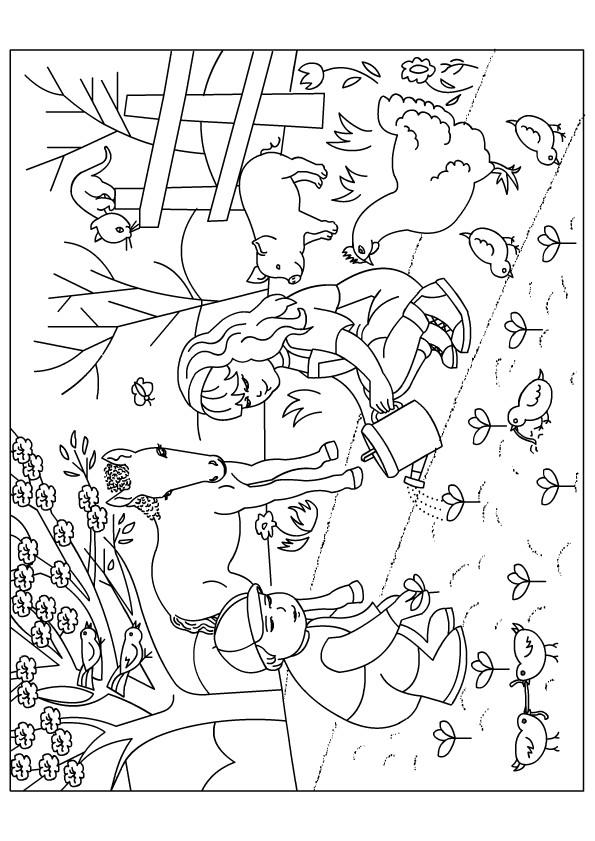 Coloriage et dessins gratuits Jardin Fleurs Ferme à imprimer