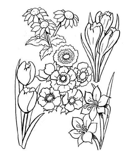 Coloriage et dessins gratuits Jardin Fleurs Lotus à imprimer