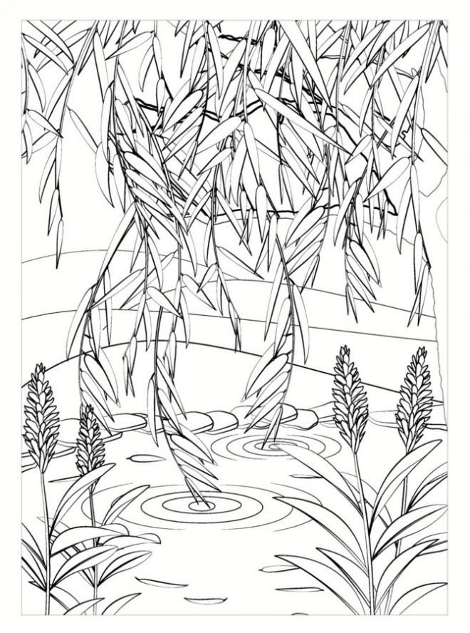 Coloriage et dessins gratuits Jardin stylisé  en noir à imprimer