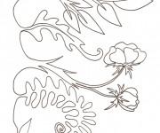 Coloriage et dessins gratuit Les plantes dans le Jardin à imprimer