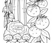 Coloriage Jardin au crayon