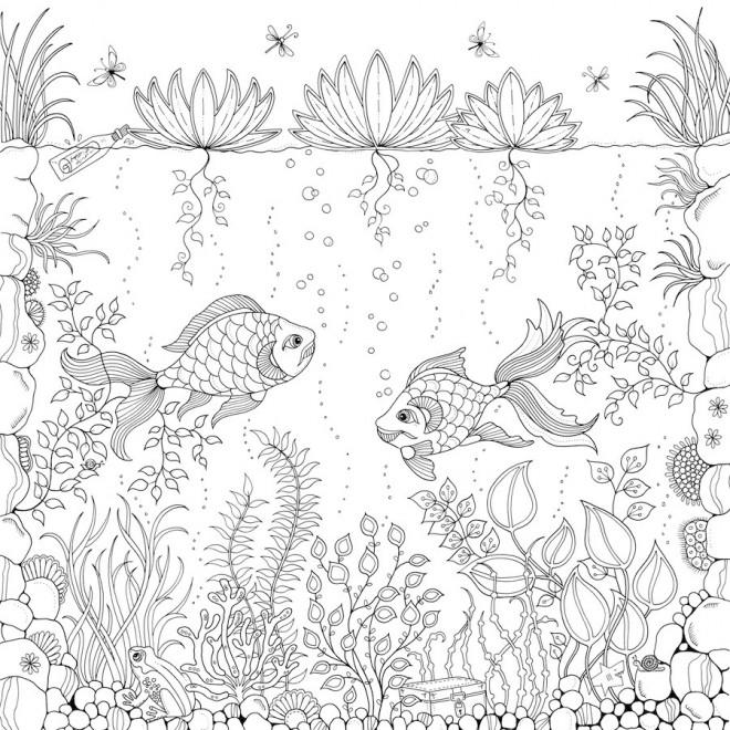 Coloriage et dessins gratuits Jardin et Poissons à imprimer