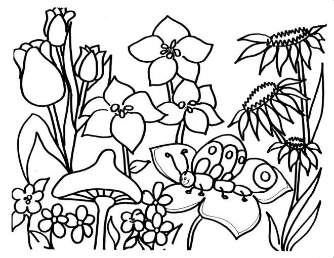 Coloriage Jardin Maternelle Dessin Gratuit A Imprimer
