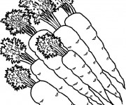 Coloriage et dessins gratuit Des Carottes à imprimer