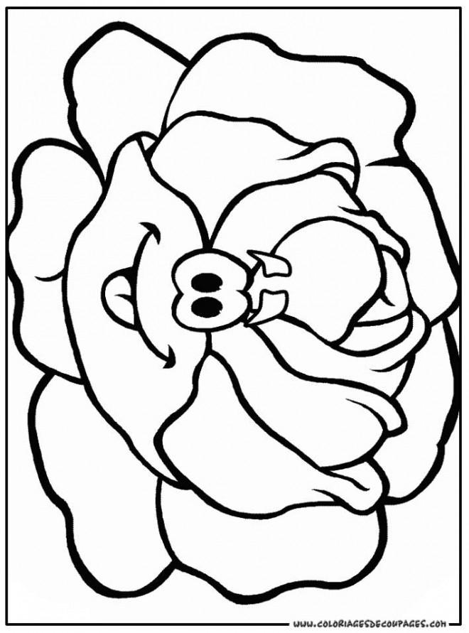 Coloriage et dessins gratuits Légume Chou rigolo à imprimer