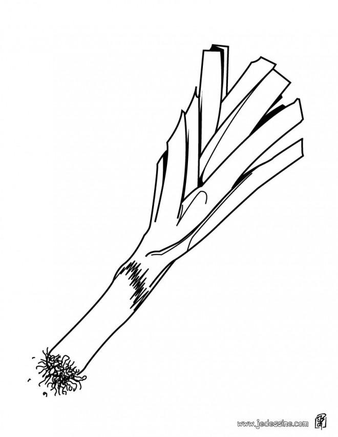 Coloriage et dessins gratuits Légume Poireau à imprimer