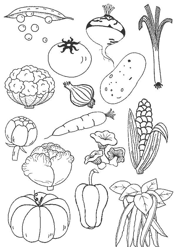 Coloriage et dessins gratuits Légumes en couleur à imprimer