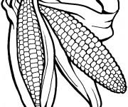 Coloriage et dessins gratuit Légumes en noir à imprimer
